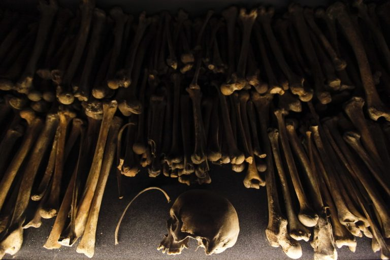 Auschwitz to Rwanda: the link between science, colonialism and genocide