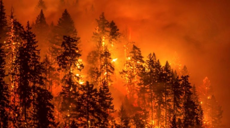 Union of Concerned Scientists See Global Warming Fueling Wildfire Risk