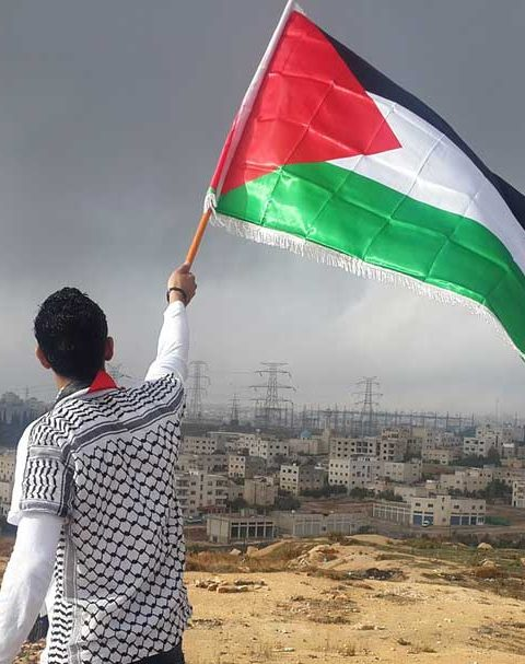 Lifestyle of resistance: Palestinian Sumud in Israel as a form of transformative resistance